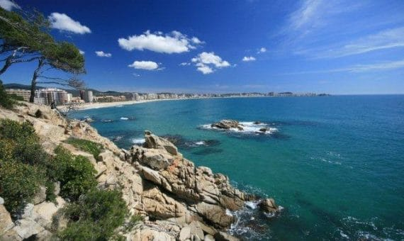 Villas on the Costa Brava and on the Costa Dorada: cliffs and long golden sands