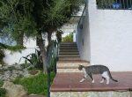11856 – House – Costa Dorada | 2366-1-150x110-jpg