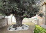 11975 – House – Costa Dorada   5885-13-150x110-jpg