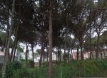 12413 – Plot of land very close to the beach in the nice green area of private houses in Castelldefels   6834-2-150x110-jpg