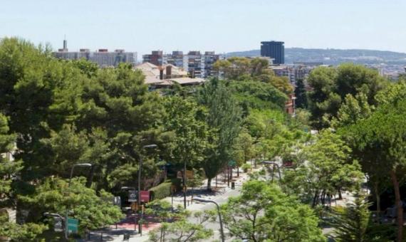 Luxury flat in Pedralbes | 8437-8-570x340-jpg